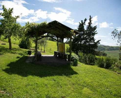 die natur im biobauernhof in der toskana ein bio-agriturismo mit ferienwohnungen und pool